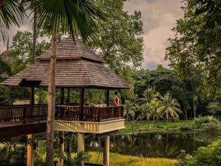 Chiang Mai Thailand Hotels