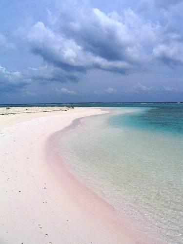 Kaaiman eilanden Boeking
