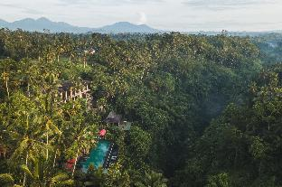 Bali Indonesia Holiday