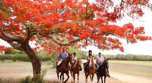 República Dominicana Reservas