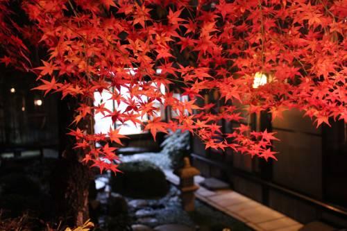 Kyoto Japan Holiday