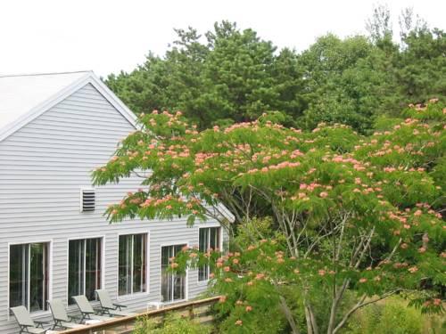 Wellfleet (Massachusetts) United States Holiday