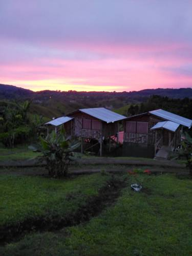 Copal Costa Rica Holiday