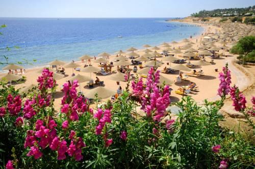 Sharm El Sheikh Egypt Reservation
